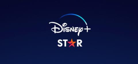 STAR(DISNEY+)